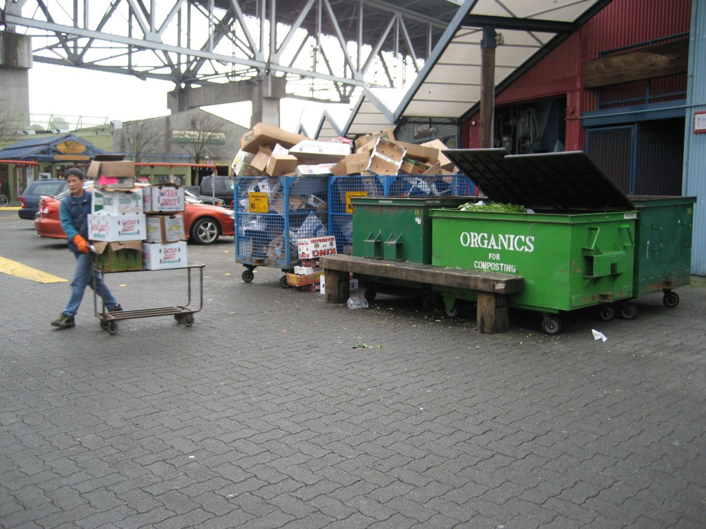 organics bin